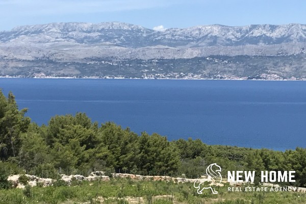 Agricultural property with olive grove on the island Brač